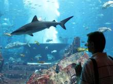 Sequel to Atlantis The Palm rising in Dubai