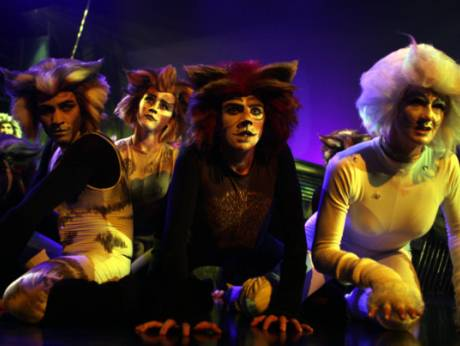 Cats tells the story of a tribe of cats called the Jellicles