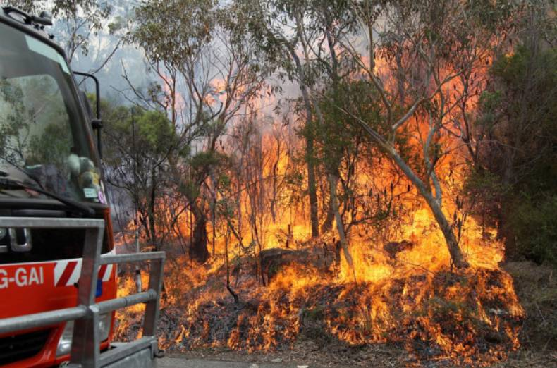 copy-of-australia-wildfires-jpeg-04cd5
