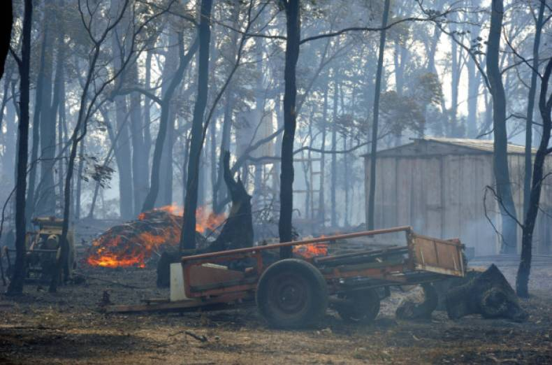 copy-of-australia-wildfires-jpeg-0b79b