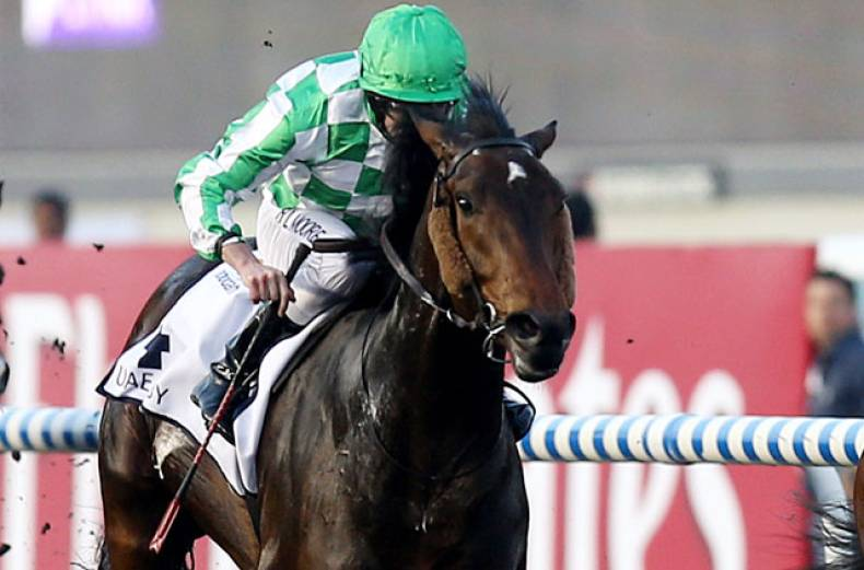 race-4-uae-derby