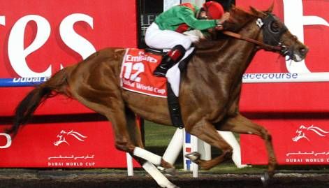 Winning horses at Dubai World Cup