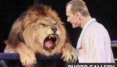 A lion tamer's death-defying spectacles