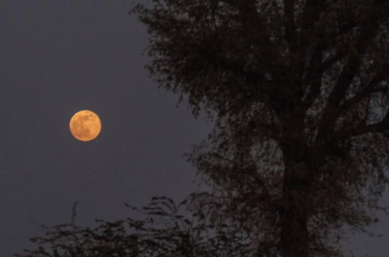 web-130623-supermoon-ar-2-jpg