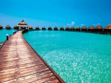 Trips from UAE for under  Dh5,200