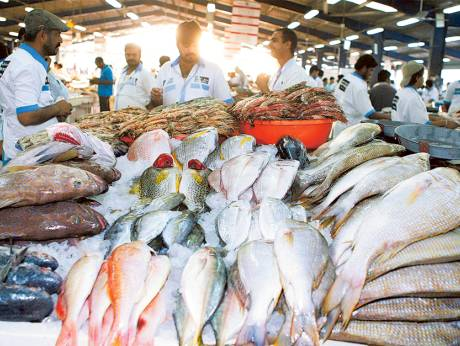 winter cools down prices at deira fish market On fish market prices