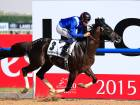 Winning horses at Dubai World Cup 2015