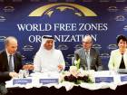 Unified standards for all free zones sought