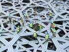 Final Louvre Abu Dhabi dome cladding in place