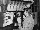 John Logie Baird: 90 years of television