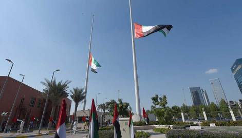 Pictures: Saluting valour and UAE pride