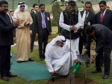 Zayed plants and Mohammad waters