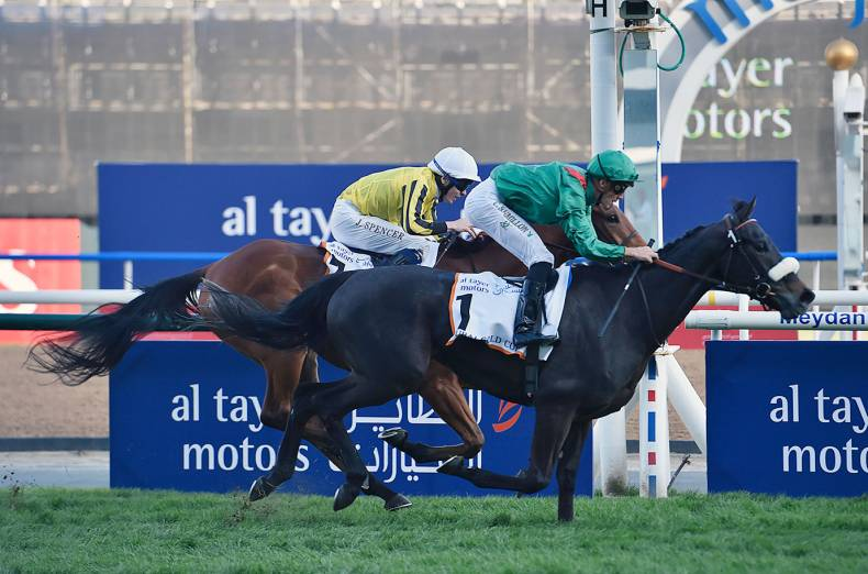 vazirabad-wins-the-dubai-gold-cup