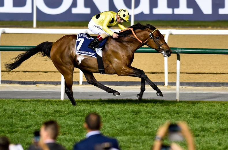 postponed-wins-the-dubai-sheema-classic
