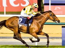 Postponed proves his mettle with a sizzling run