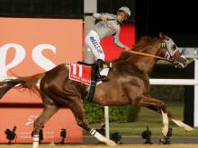 California Chrome becomes richest horse