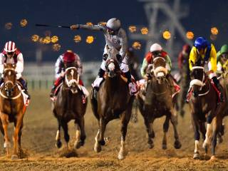 Highlights from the 2016 Dubai World Cup