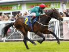 Dubai-owned duo face Derby test
