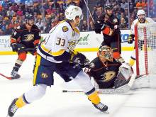 Ducks down and out as Predators advance