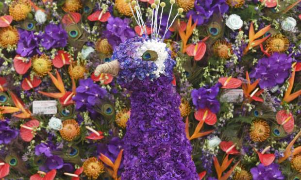 In Pictures: Chelsea Flower Show 2016