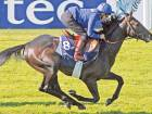 Duo seek first Derby win in Godolphin colours