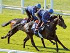 Dubai connections hope for a superstar at Epsom