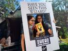 Harry Potter fever hits the UAE