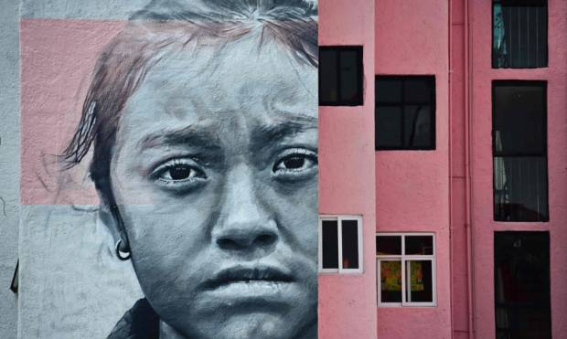Stunning murals brighten neighborhood in Mexico