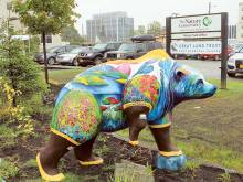 Colourful bear statues spring up in Alaska