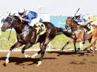 Bin Harmash takes Jebel Ali by storm