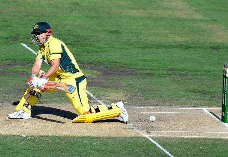 Warner hits another ton to sweep New Zealand
