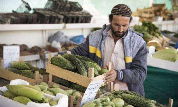 Pictures: Farmers' market in Qatar