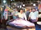 Japanese fish sells for $4,495 per kilo
