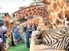 Emirates Park Zoo opens extension