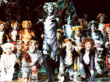 'Cats' in Dubai: 10 facts about the musical