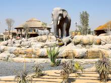 Watch: Dubai Safari closed due to rain