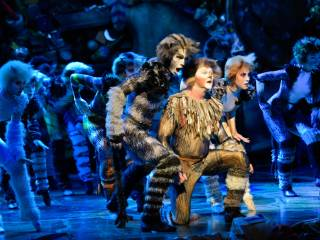 Watch: Musical CATS comes to Dubai