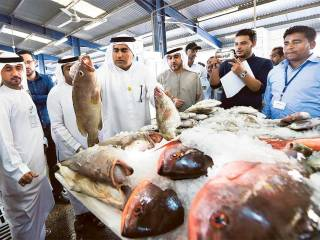 How to buy fresh fish: official explains