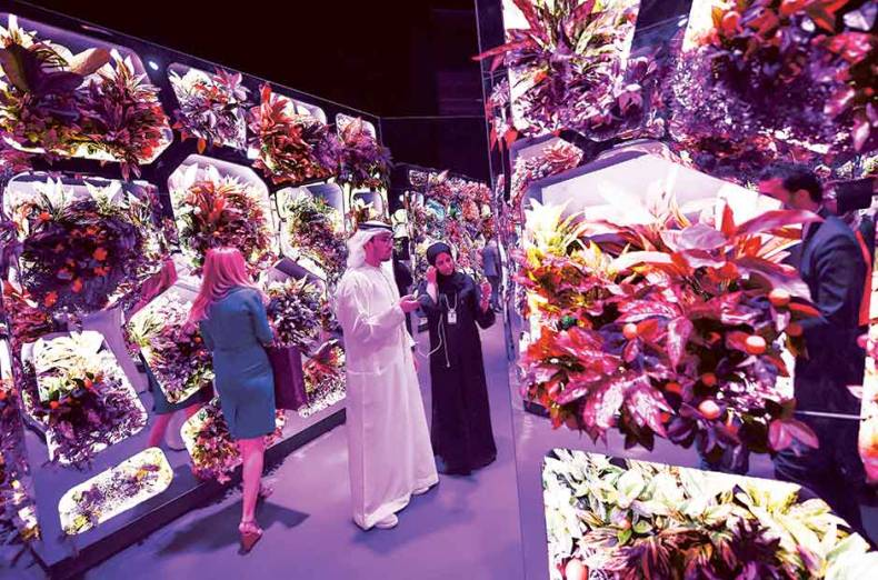 delegates-look-at-an-exhibit-of-a-futuristic-food-auto-farm-at-the-summit