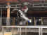 Seriously: This robot can jump