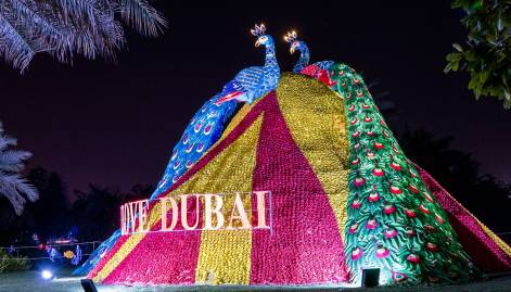 Dazzling nights at Dubai Garden Glow