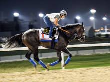 Will it be Arrogate's day?