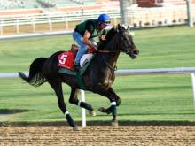Vazaribad chases second straight Dubai Gold Cup