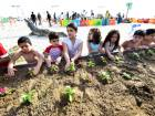 Children planting saplings at a workshop which encouraged them to make their own gardens at home.