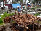 In this file photo, Ereneio Dagami, who lost his house to Typhoon Haiyan, grates coconuts in the battered town of Catadman, in Eastern Samar province, central Philippines REUTERS/Romeo Ranoco