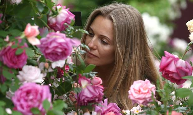 A woman smells roses at the RHS Chelsea Flower Show in London.