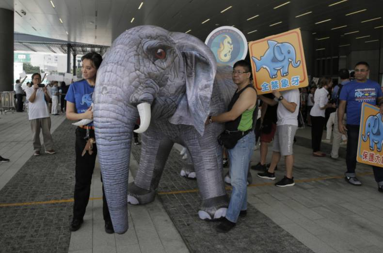 copy-of-hong-kong-ivory-ban-67384-jpg-95f38