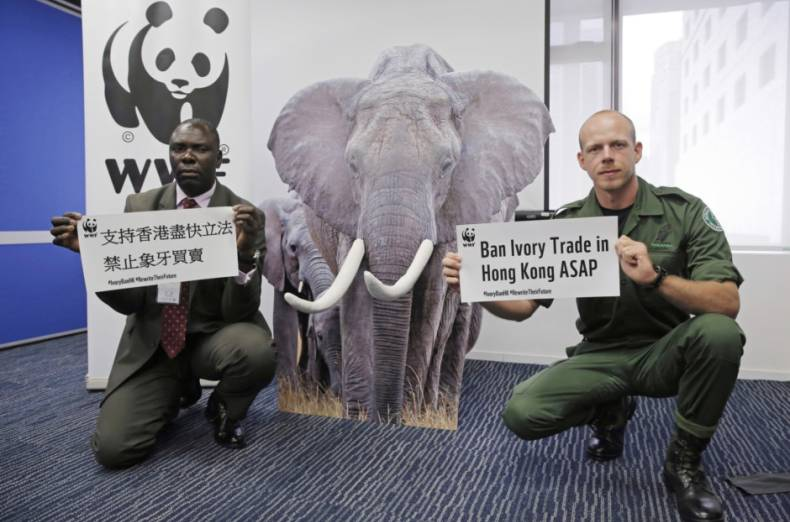 copy-of-hong-kong-ivory-ban-25386-jpg-fd39a