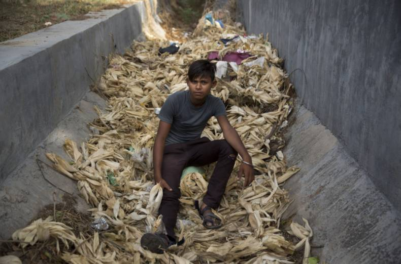 copy-of-india-corn-boys-96849-jpg-a3d12