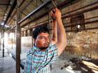 India's poultry producers cash in on beef curbs